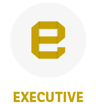 Icono Plan Executive