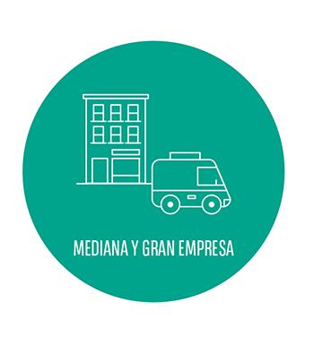 Renting car para mediana y gran empresa