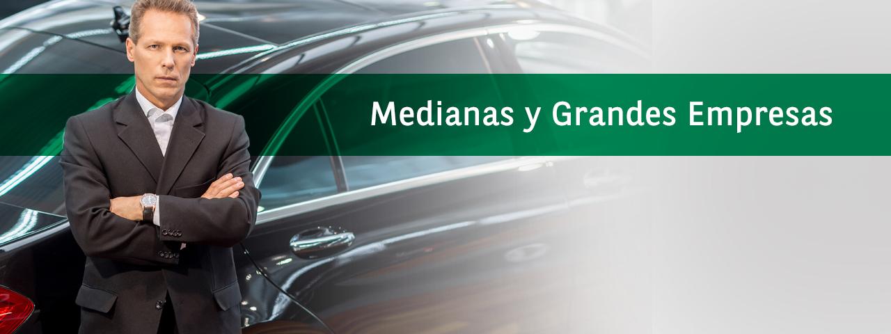 Renting_medianas_y_grandes_empresas